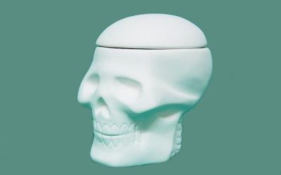 Skull Box With Lid On